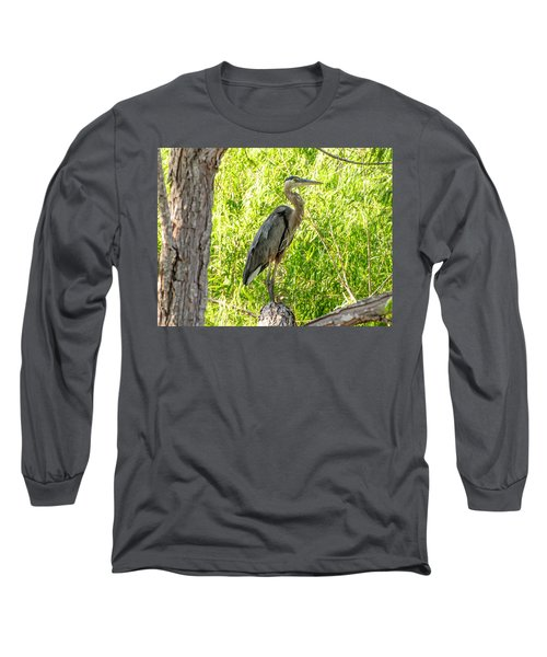 Blue Heron At Rest Long Sleeve T-Shirt