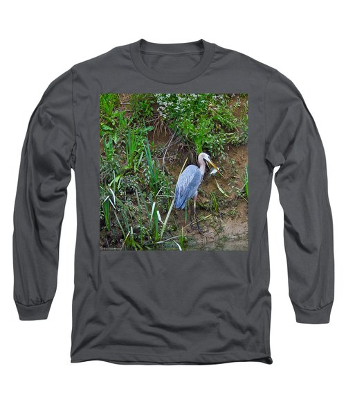 Blue Heron Long Sleeve T-Shirt by Brian Williamson