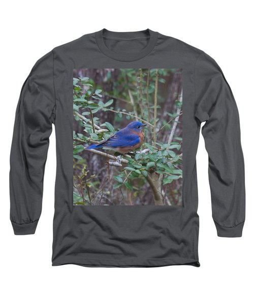 Bluebird Long Sleeve T-Shirt