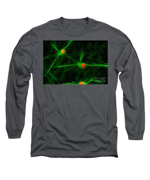 Brain Neurons Long Sleeve T-Shirt