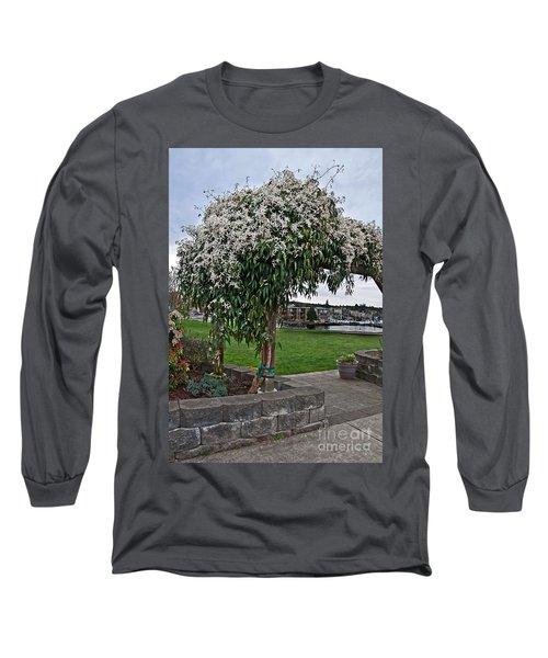 Bridal Veil Vine Stephanotis Growing On A Trellis Long Sleeve T-Shirt