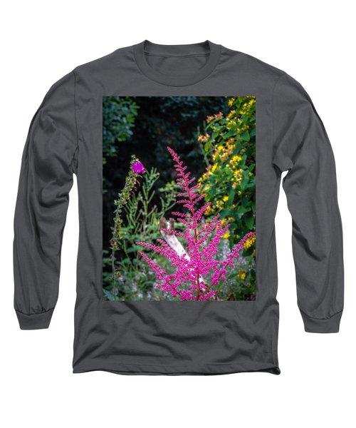 Brilliant Astilbe In Markree Castle Gardens Long Sleeve T-Shirt