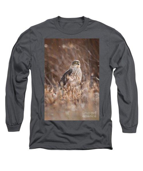 Broad-winged Hawk Long Sleeve T-Shirt