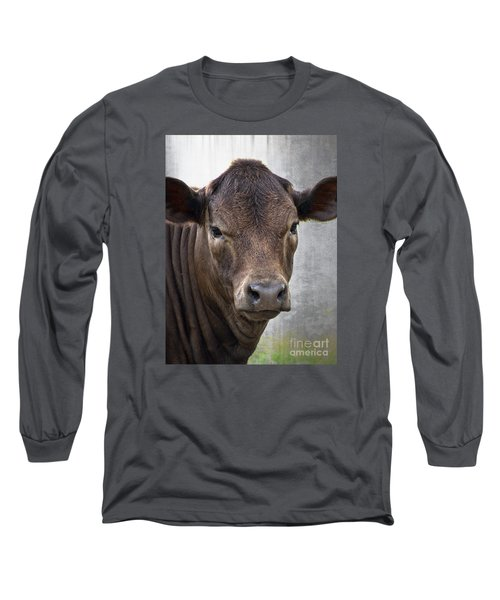 Long Sleeve T-Shirt featuring the photograph Brown Eyed Boy - Calf Portrait by Ella Kaye Dickey