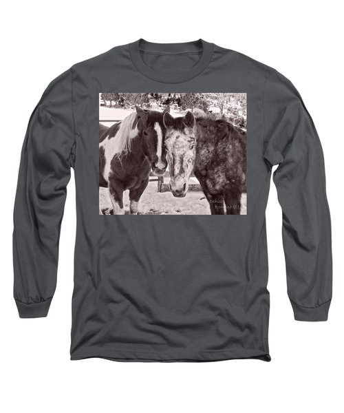 Long Sleeve T-Shirt featuring the photograph Buddies In Snow by Denise Romano