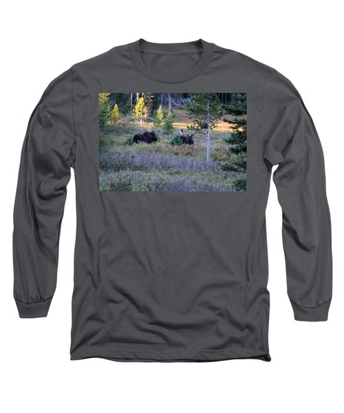 Bulls In The Meadow Long Sleeve T-Shirt
