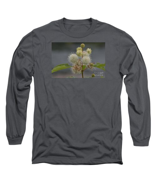 Long Sleeve T-Shirt featuring the photograph Buttonbush by Randy Bodkins