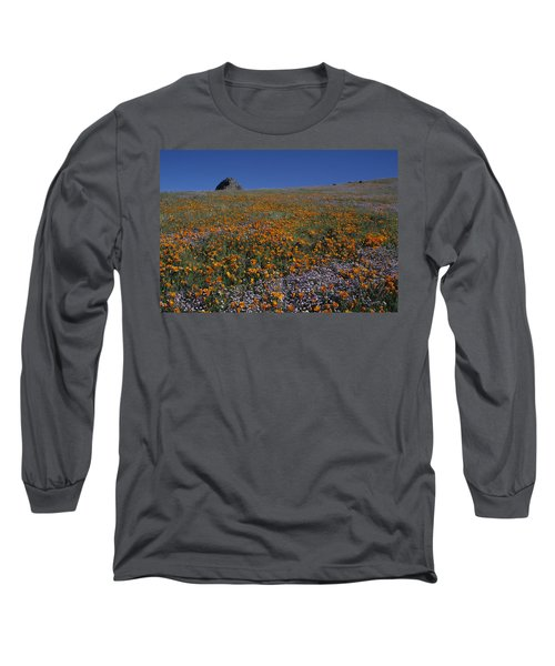 California Gold Poppies And Baby Blue Eyes Long Sleeve T-Shirt by Susan Rovira