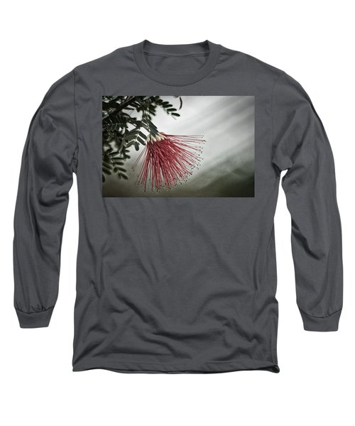 Calliandra Californica Long Sleeve T-Shirt