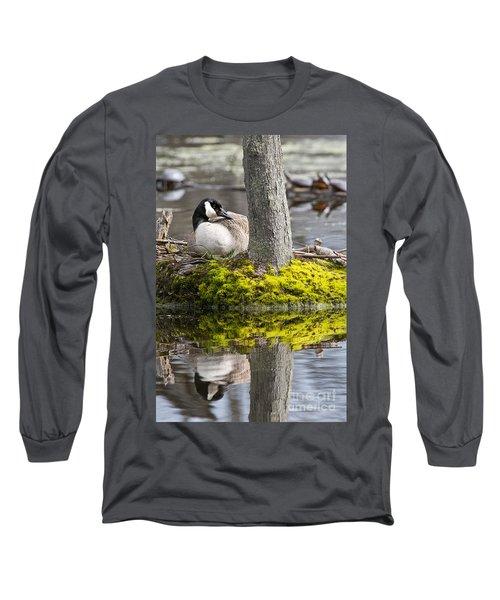 Canada Goose On Nest Long Sleeve T-Shirt
