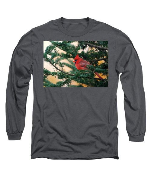 Cardinal In Balsam Long Sleeve T-Shirt by Susan Capuano