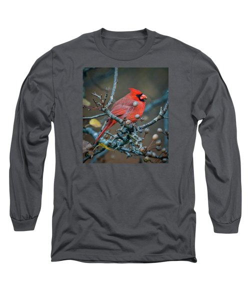 Cardinal In The Berries Long Sleeve T-Shirt by Kerri Farley