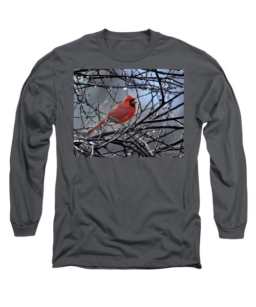 Cardinal In The Rain   Long Sleeve T-Shirt by Nava Thompson