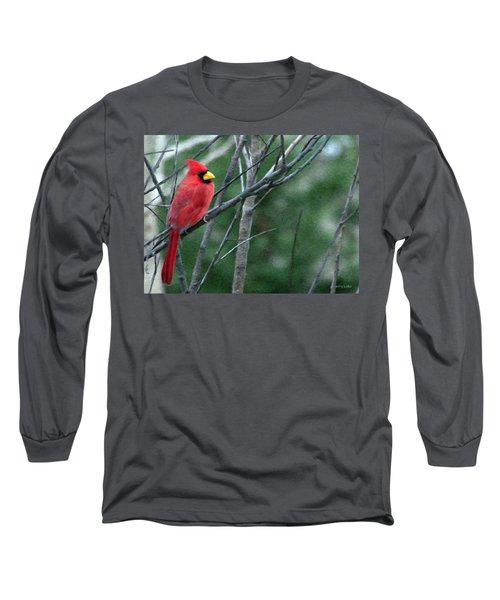 Cardinal West Long Sleeve T-Shirt by Jeff Kolker