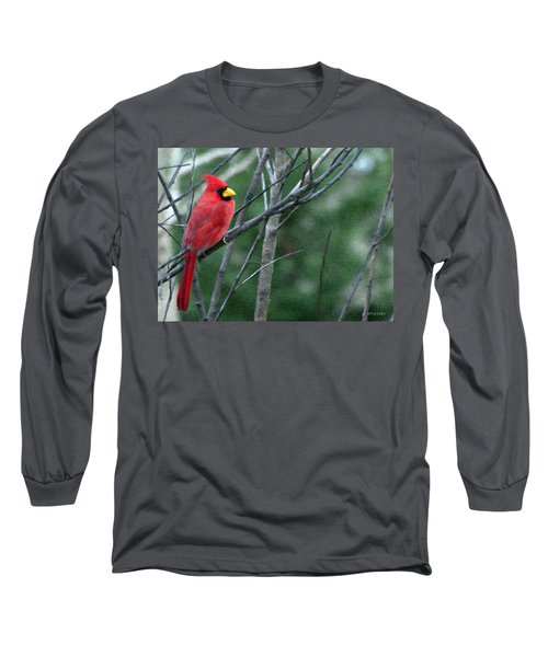 Cardinal West Long Sleeve T-Shirt