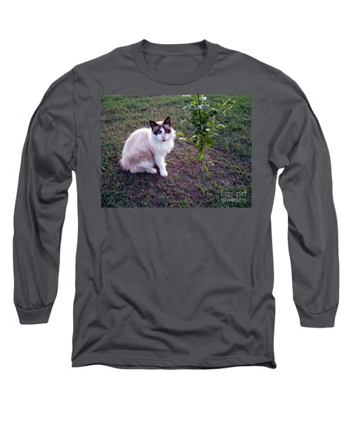 Cat 'n Orange Tree Long Sleeve T-Shirt