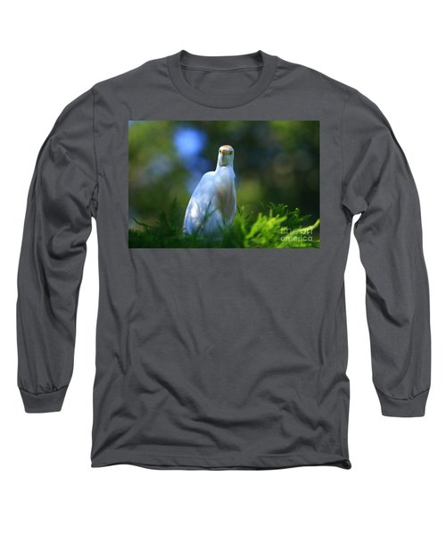 Cattle Egret Eyes Long Sleeve T-Shirt