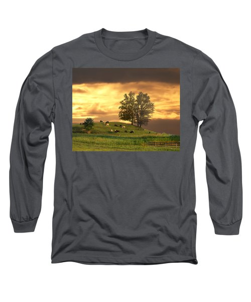 Cattle On A Hill Long Sleeve T-Shirt