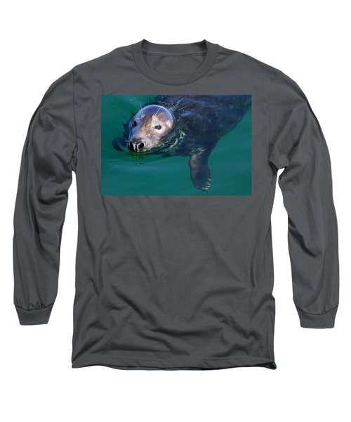 Chatham Harbor Seal Long Sleeve T-Shirt by Stuart Litoff