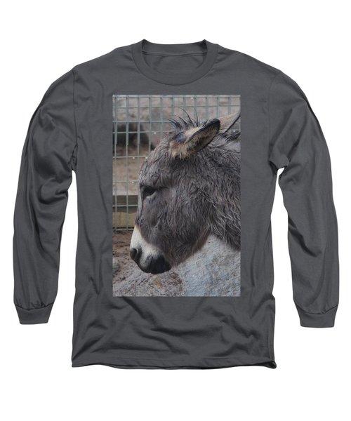 Christmas Donkey Long Sleeve T-Shirt