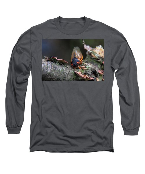 Cicada - The Red-eyed Monster Long Sleeve T-Shirt by Yvonne Wright