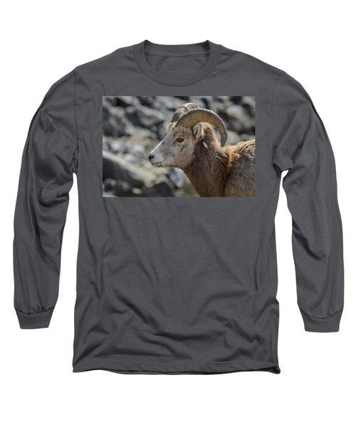 Close Big Horn Sheep  Long Sleeve T-Shirt