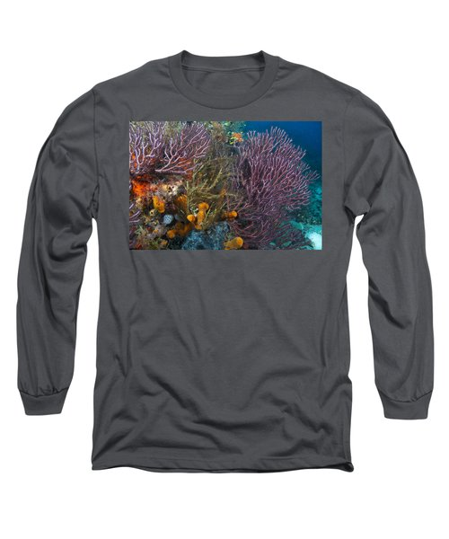 Colors Of Reefs Long Sleeve T-Shirt