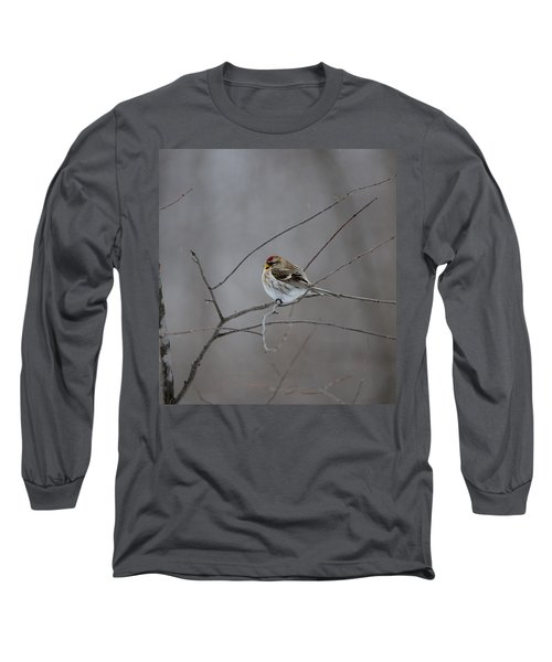 Long Sleeve T-Shirt featuring the photograph Common Redpoll by David Porteus