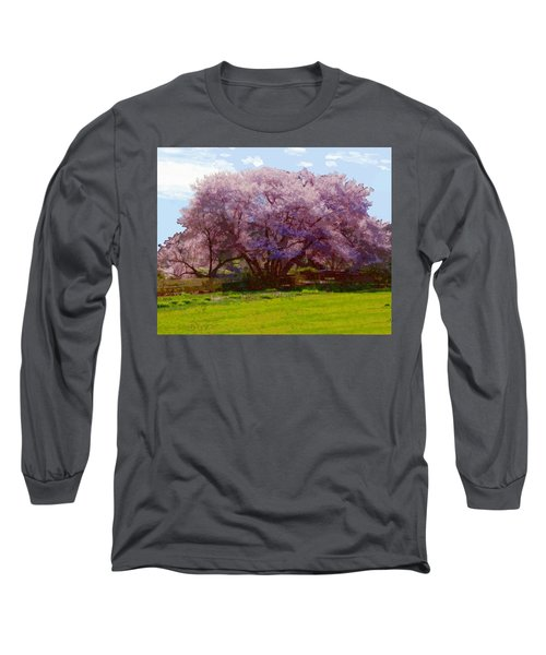 Concord Spring Long Sleeve T-Shirt