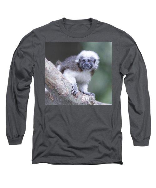 Cotton Top Tamarin  Long Sleeve T-Shirt
