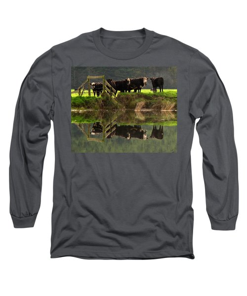 Cow Reflections Long Sleeve T-Shirt