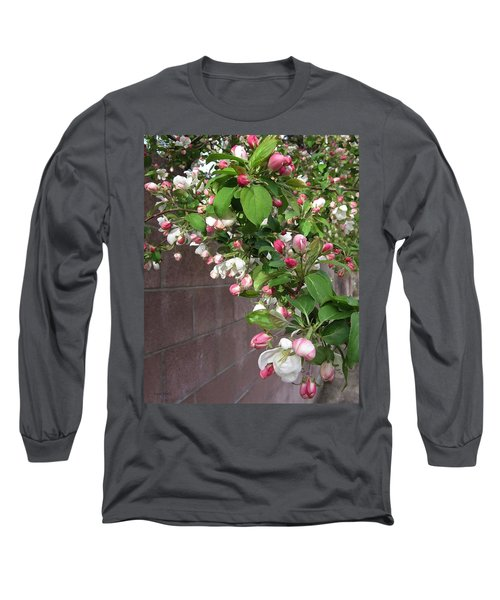 Crabapple Blossoms And Wall Long Sleeve T-Shirt by Donald S Hall