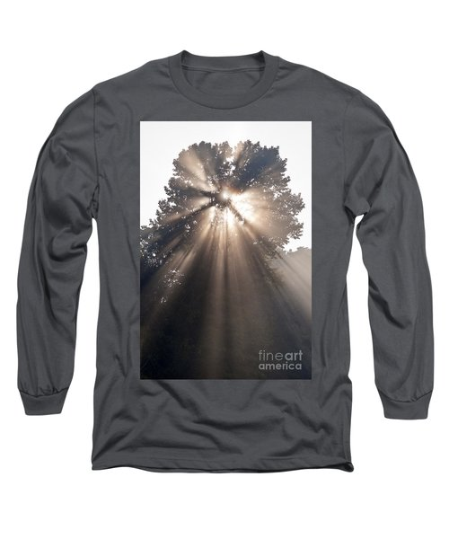 Crepuscular Rays Coming Through Tree In Fog At Sunrise Long Sleeve T-Shirt