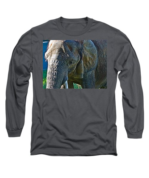 Cuddles In Search Long Sleeve T-Shirt