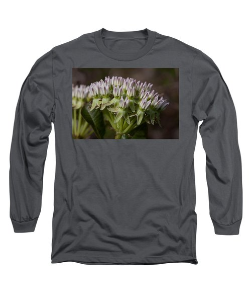 Long Sleeve T-Shirt featuring the photograph Curtiss' Milkweed #3 by Paul Rebmann