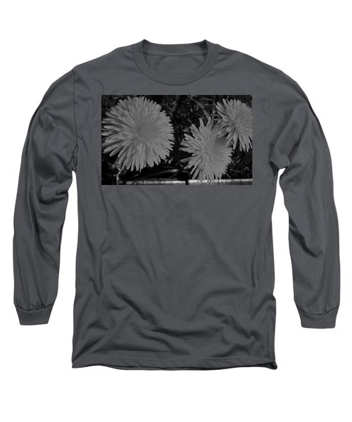 Long Sleeve T-Shirt featuring the photograph Dandelion Weeds? B/w by Martin Howard