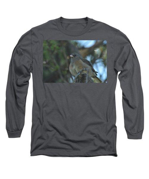 Dark-eyed Junco Long Sleeve T-Shirt