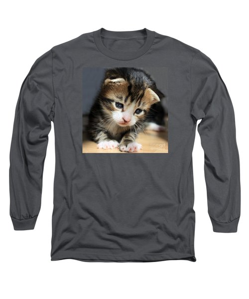 Long Sleeve T-Shirt featuring the photograph Daydreamer Kitten by Terri Waters
