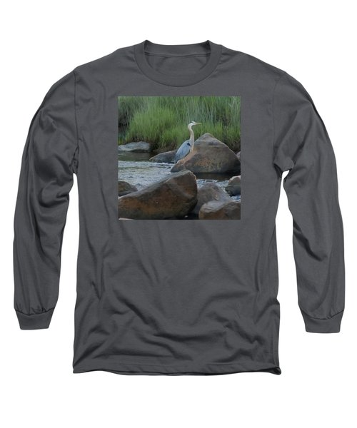 Long Sleeve T-Shirt featuring the photograph Definitely Blue Heron by Francine Frank