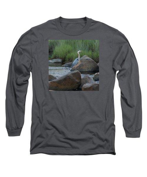 Definitely Blue Heron Long Sleeve T-Shirt
