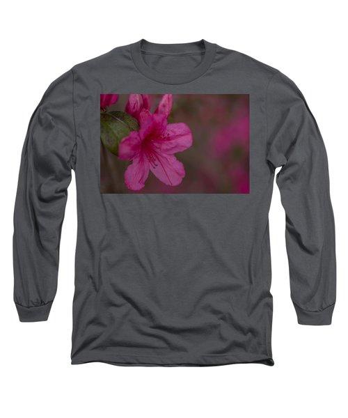 Delightful Azalea Long Sleeve T-Shirt