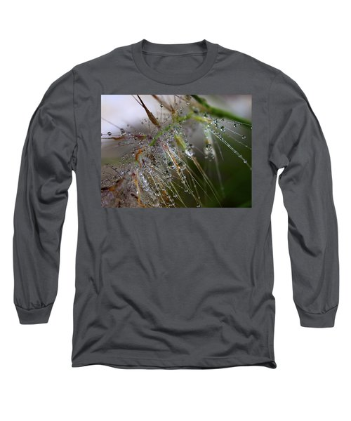 Dew On Fountain Grass Long Sleeve T-Shirt by Joe Schofield