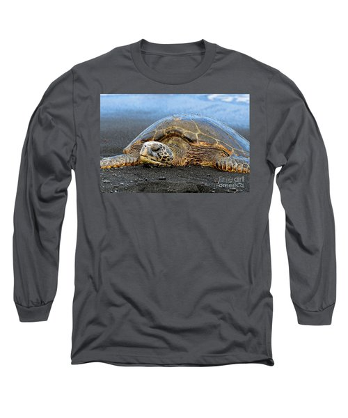 Do Not Disturb Long Sleeve T-Shirt by David Lawson