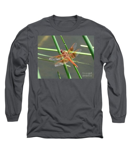 Long Sleeve T-Shirt featuring the photograph Dragonfly Orange by Kerri Mortenson