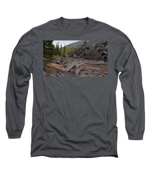Driftwood And Rock Long Sleeve T-Shirt