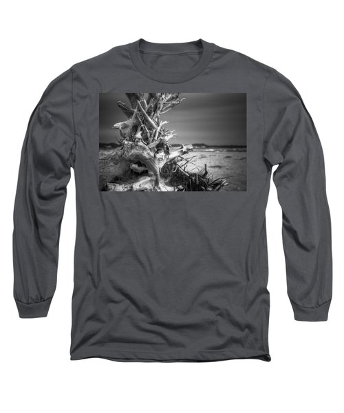 Driftwood At Race Point Long Sleeve T-Shirt