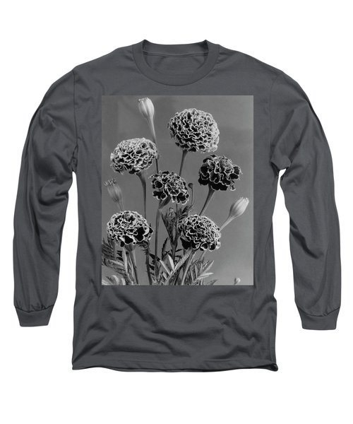 Dwarf Monarch Marigolds Long Sleeve T-Shirt