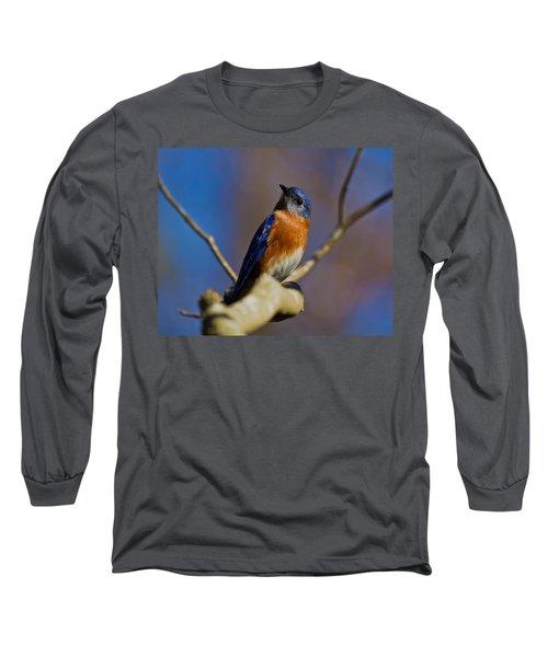 Eastern Bluebird Long Sleeve T-Shirt by Robert L Jackson