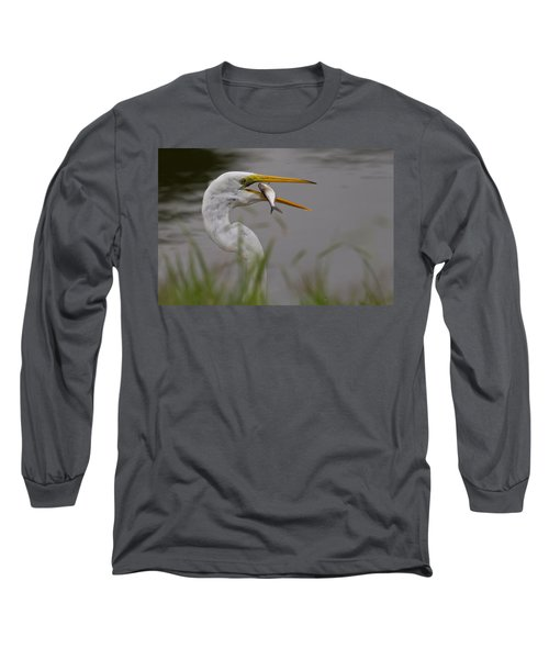 Long Sleeve T-Shirt featuring the photograph Egret Having Lunch by Jerry Gammon