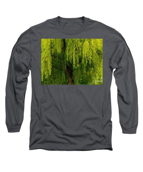 Enchanting Weeping Willow Tree  Long Sleeve T-Shirt by Carol F Austin